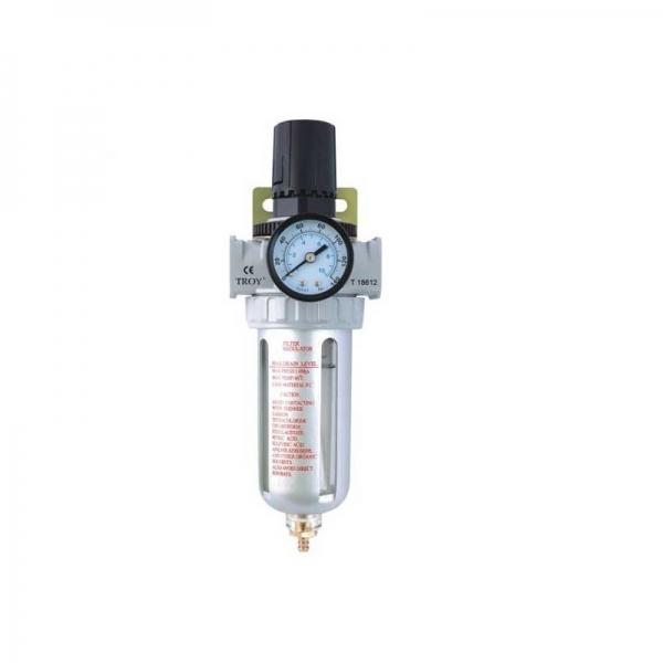 Filtru Regulator 1 4 10 120 psi 0 8 bari Troy T18614